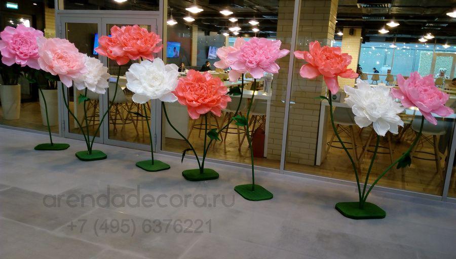 аренда бумажных цветов
