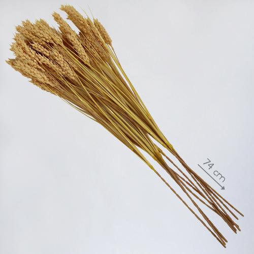 """Муляж """"Колосья пшеницы"""" в аренду (прокат)"""