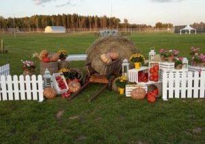 Фотозона Праздник урожая