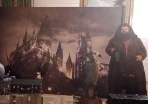 фотозона в стиле Гарри Поттер